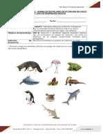 GUIA_2_ANIMALES_EN_PELIGRO_DE_EXTINCION_EN_CHILE_93536_20190909_20180802_083815