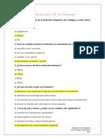 Adaptación al embarazo y UFP