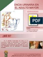 incontinenciaurinaria-131223140832-phpapp02