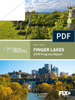 2019 Finger Lakes Progress Report