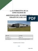 guia_formativa_anestesiologia_2018.pdf