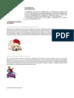 Ejercicio Práctico en Clase Analisis-De-porter
