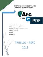 275612985-ARCGIS.docx