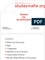 ECOSYSTEM PPT.pptx
