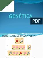 02 GENÉTICA
