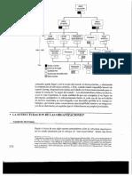 Estructuras organizacional