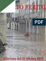 Veneto Ferito. Alluvione del 31 Ottobre 2010