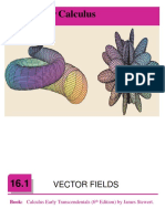 Few Concepts of Vector Fields