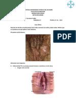 Caso Clinico 2 - DNTP