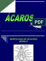 ACAROS ARADORES