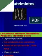 Phylum Platyhelmintes