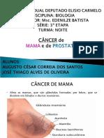 Cancer de Prostata e Mama