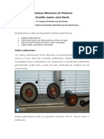 Documento SEP....pdf