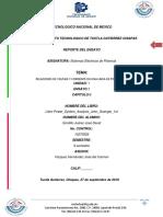 ENSAYO 1....pdf