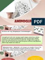 aminoglikosida pptt