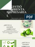 Presentacion Iga (1)