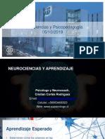 Neurociencias Del Aprendizaje Clase 5-10 PEV