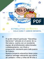 Perfil Cargo