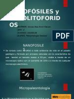 nanofosiles