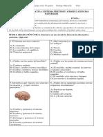 evaluación sumativa ciencias 4°básico