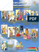 11 Pasos Ihman 2014 Afiche