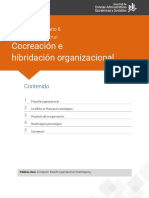 Hibridacion organizacional