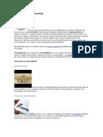 benchmarking ejemplos y caso.pdf