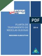 15533_2015_3_ResumenEjecutivo.reg.pdf