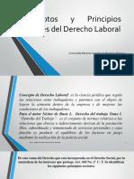 Conceptos y Principios Rectores Del Derecho Laboral