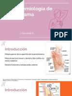 Semiología Mama.pptx