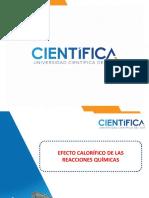 EFECTO CALORÍFICO DE LAS REACCIONES QUÍMICASppt.pdf