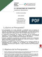 Glosario y Definiciones Presupuestos