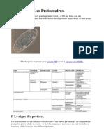 Chapitre 1- Les Protozoaires