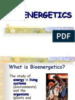 Bioenergetics (1).ppt
