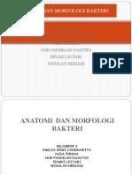anatomi_dan_morfologi_bakteri[1]
