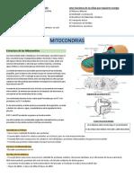 Resumen Biologia celular