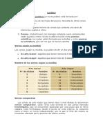 La lirica -literatura 6 primaria.docx