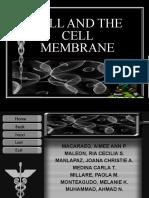 Cell & Cell Membrane (1st Sem)