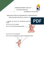4 Miología.pdf