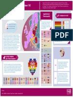 Dataviz Droits Des Homosexuels Dans l UE