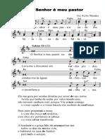 O Senhor é meu pastor, nada me faltara - Salmo 22(23) - Frei Acelio Mendes