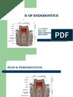 Basics of Endodontics