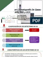 Seminario Npd, Fpd y Ecd