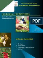 Clase 2 ECo DS UNTELS.pdf