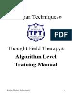 TFT Algorithm Manual