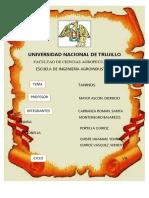 INFORME-TANINOS.docx
