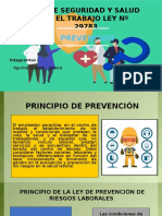 Prevencion Principio 1