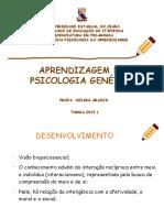 SLIDE Aula 3 Psicologia Da Aprendizagem