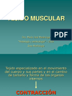 Clase 5. Tejido Muscular