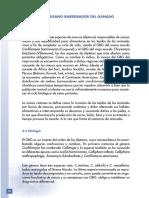 ai173s02.pdf
